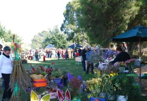 2011 Harvest Festival long shot